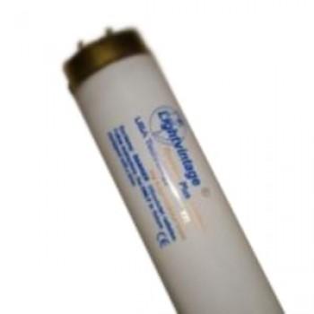 "Лампа ""Lightvintage Special Line 24/180-200 WR XXL"" (200 см)"